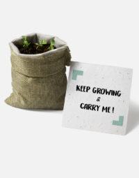 keep-growing-and-carry-me-avec-pousses-aromates-papierfleur