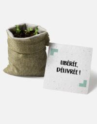 liberee-delivree-avec-pousses-papierfleur-zero-dechet-herbes-aromatiques