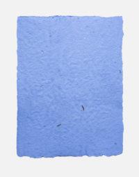 lot-de-feuilles-original-couleur-bleu-ciel-non-imprimable-papier-ensemence-seedpaper-graines