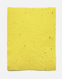 lot-de-feuilles-original-couleur-jaune-papierfleur-papier-ensemence-non-imprimable-ecologique