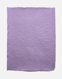 lot-de-feuilles-original-couleur-lavande-papierfleur-papier-a-graines-seedpaper-zero-dechet