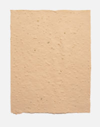 lot-de-feuilles-original-couleur-terra-cotta-papierfleur-non-imprimable-papier-ensemencee-graines-papeterie
