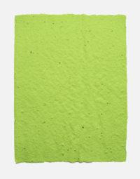 lot-de-feuilles-original-couleur-vert-citron-papierfleur-non-imprimable-papier-ensemence-graines