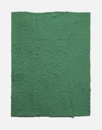 lot-de-feuilles-original-couleur-vert-foret-papierfleur-seedpaper-papeterie-a-planter-zero-dechet