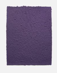 lot-de-feuilles-original-couleur-violet-papierfleur-papier-ensemence-graines-non-imprimable-seedpaper