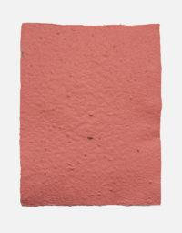 lot-de-feuilles-original-framboise-papierfleur-non-imprimable-papier-a-graines-fleurs