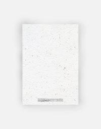 anniversaire-champetre-a6-verso-eco-papier