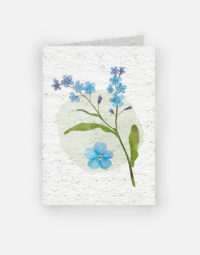 bouquet-de-bleuet-papierfleur-carte-a-planter-biodegradable-graines