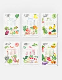 calendrier-2021-a-planter-papierfleur-premiers-mois-biodegradable-graines-de-saison