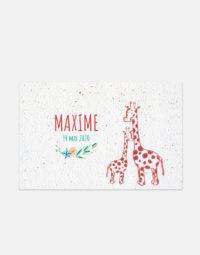 faire-part-naissance-girafe-10x15-elsa-animal-protection