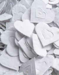 florettis-coeurs-blancs-papierfleur-forme-a-planter-zoom-seedpaper